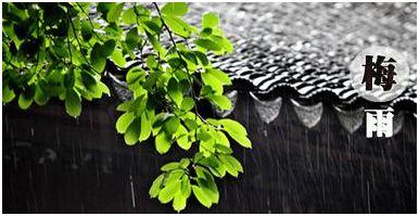中国除湿机目前的市场现状和未来的发展前景